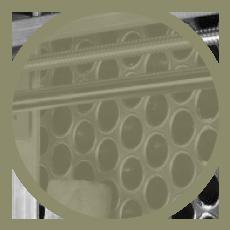 stamp-img-4